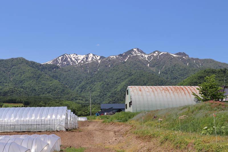 芦別岳の残雪の様子