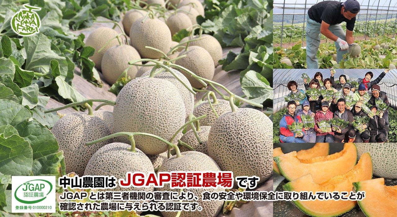 中山農園はJGAP認証農場です